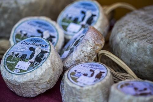 queso-tradicional